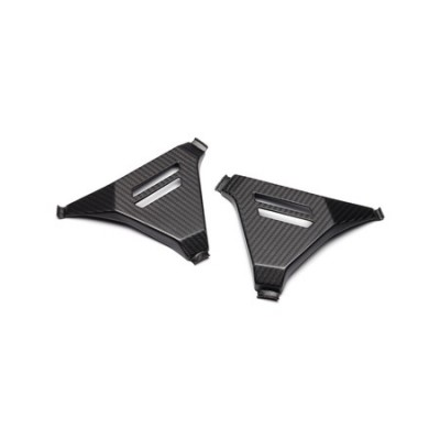 Protectores de bastidor de carbono Super Ténéré - Carbon matt finish